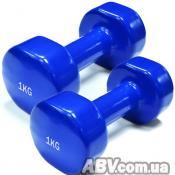Гантель Rising 1 кг (пара) (DB2113-1)