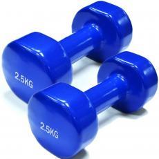 Гантель Rising 2,5 кг (пара) (DB2113-2,5)